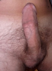 Porno amatoriale Minchia dura 16 cm